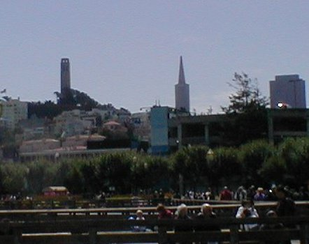 View of Coit and Transamerica Towers from Fishermans' Wharf